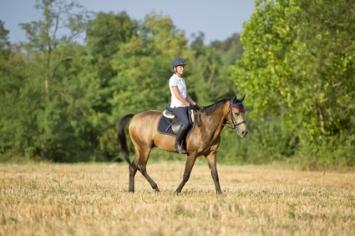 Balades A Cheval En Luberon Randonnees Equestres