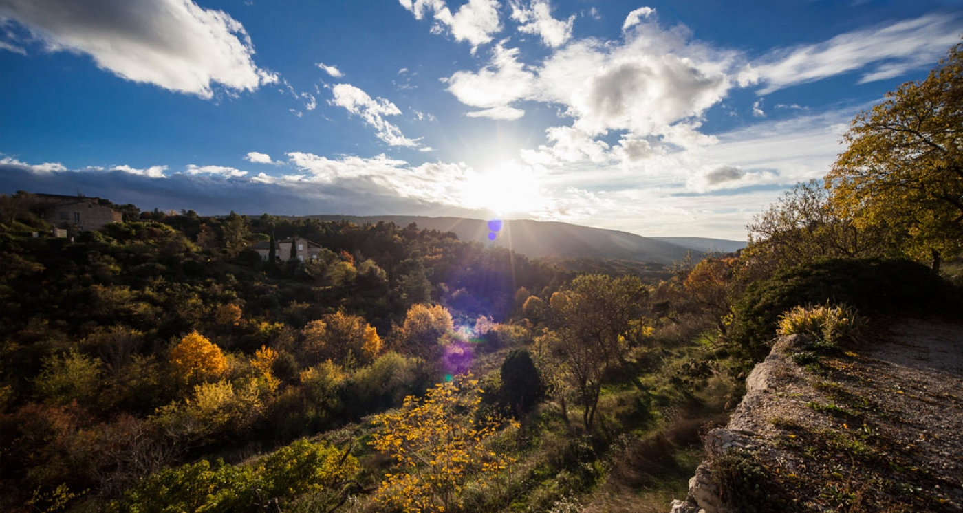Guides accompagnateurs du Luberon - Culture et Nature