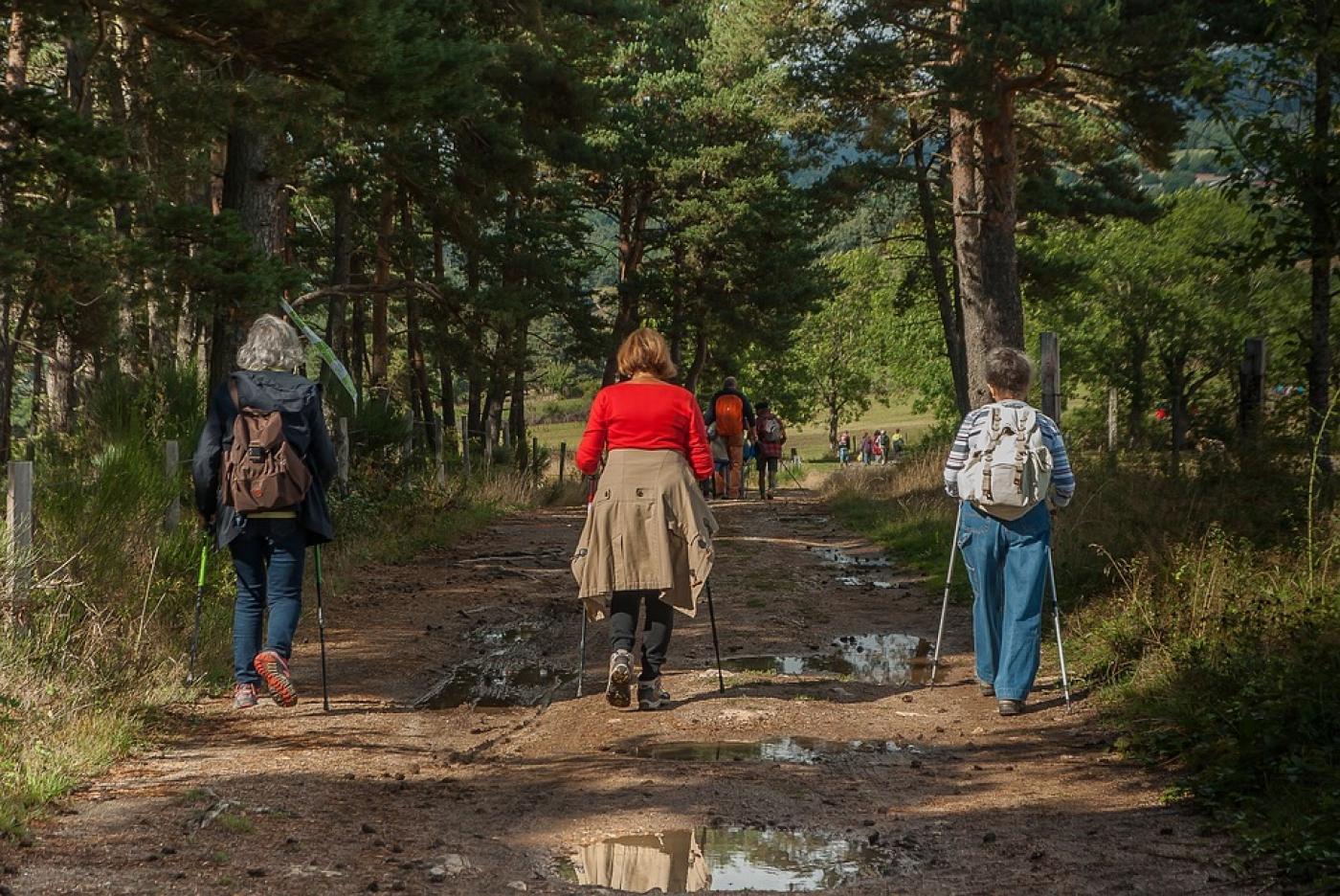 Randonnées pédestres en Luberon - Itinéraires